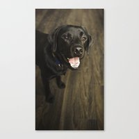 lab Canvas Prints featuring Black Lab by Every Dog Has a Story