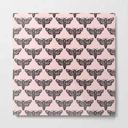 Death's Head Moth - Blush Metal Print