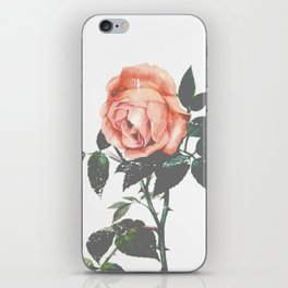 Thorned Rose iPhone Skin