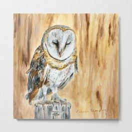 Sleeping Willow-Young Barn Owl by Teresa Thompson Metal Print