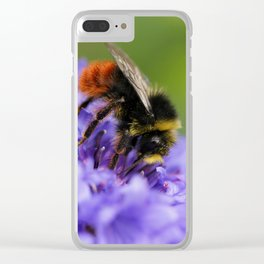 Double Blue Cornflower with Guest Clear iPhone Case