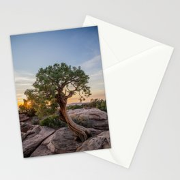 A Tree Grows Stationery Cards