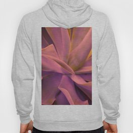 Agave In Pink Hoody