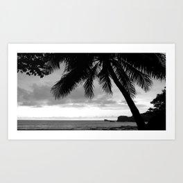 Tropical Darkroom #154 Art Print