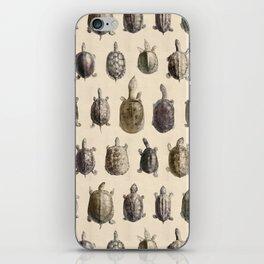 Vintage Turtles Pattern iPhone Skin