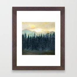 Forest Under the Sunset II Framed Art Print