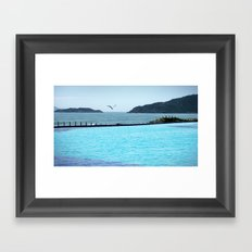 Swimming Pool Gull Framed Art Print