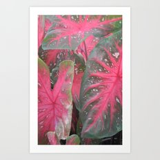 Pink Vertical Art Print
