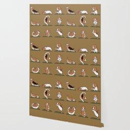 Beagle Yoga Wallpaper