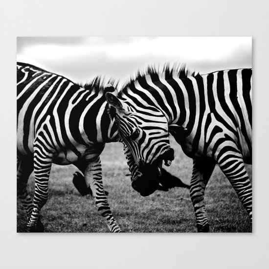 Let's Fight! // Wildlife Zebra Black Adn White Photography #society6 #art #prints Canvas Print