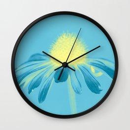 Echinacea in pastel shade Wall Clock