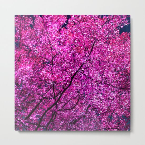 violet tree IV Metal Print