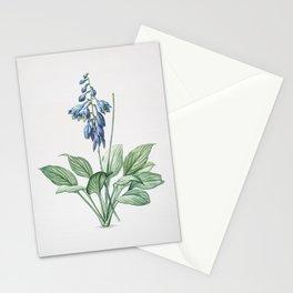 Vintage Daylily Illustration Stationery Cards