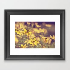 Summer  Bee Framed Art Print