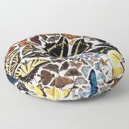 Butterflies of North America Floor Pillow