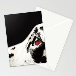 The Amber Eye. Kokkie. Dalmation Dog Stationery Cards
