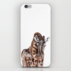 Giraffe with Baby Giraffe iPhone & iPod Skin
