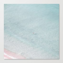 beach - the swimmer Canvas Print