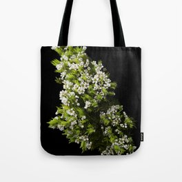 Diosma White Cape Flowers Tote Bag