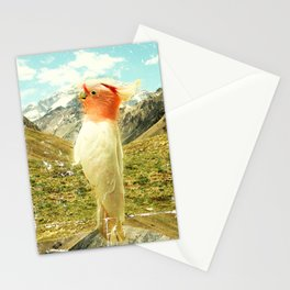 Parrot Mountain Stationery Cards