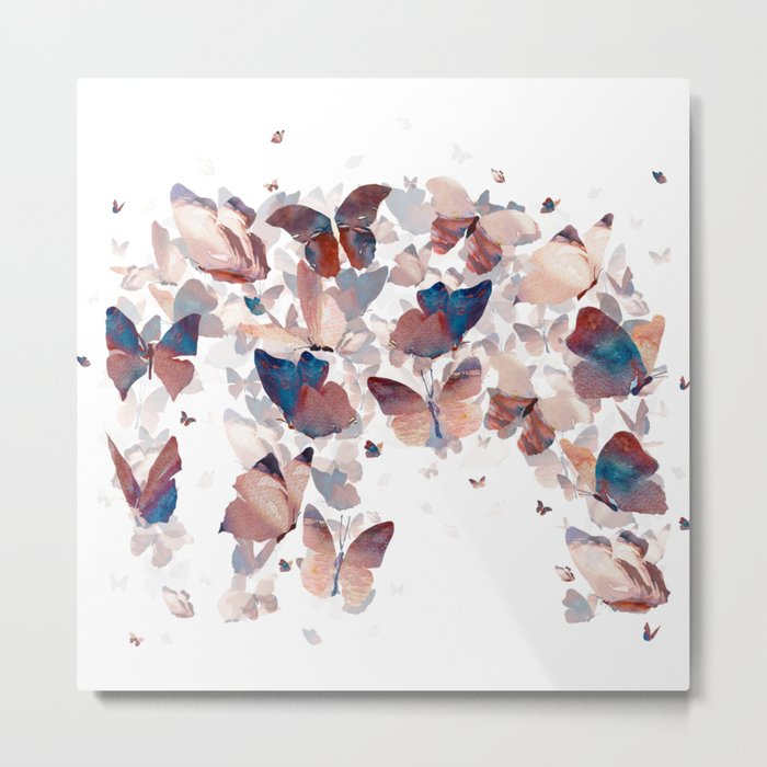 Butterfly Assemblage Metal Print