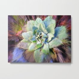 Mullein with ice Metal Print