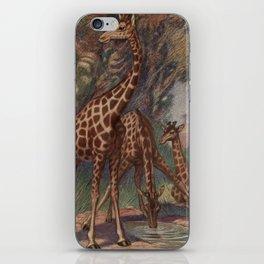 Vintage Giraffe Painting (1909) iPhone Skin