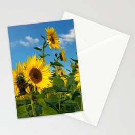 Sunflowers 11 Stationery Cards