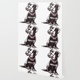 Dachshund Dog Wallpaper