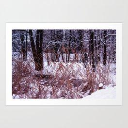 Nix in parco Art Print