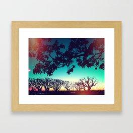 Seaport Village, San Diego, CA Framed Art Print