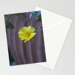 Longwood Gardens - Spring Series 155 Stationery Cards