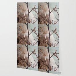 Agapanthus bouquet Wallpaper