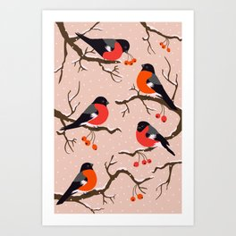Winter birds red Bullfinches on snowy berry branches pastel peach Art Print