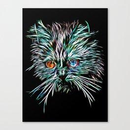 Odd-Eyed White Glowing Cat Canvas Print