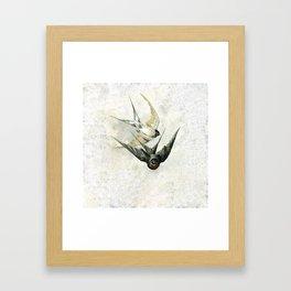 Vintage Soaring Birds Framed Art Print