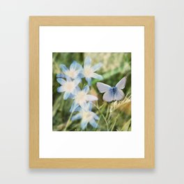 Butterfly :: Blue Sky Wings Framed Art Print