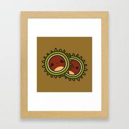Cute Conkers Framed Art Print