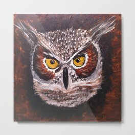 Night Owl... Metal Print