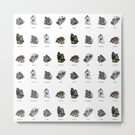 Rock collection with names Metal Print