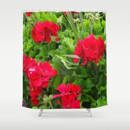 RED GERANIUMS GREEN GARDEN Shower Curtain