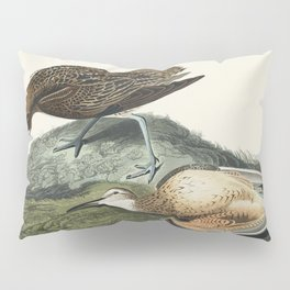 Hyperborean phalarope from Birds of America (1827) by John James Audubon etched by William Home Liza Pillow Sham