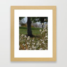 Midday Meadow Framed Art Print