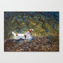 The Shallows Canvas Print