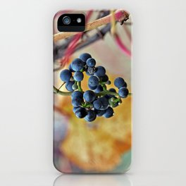 It was a very good year... iPhone Case