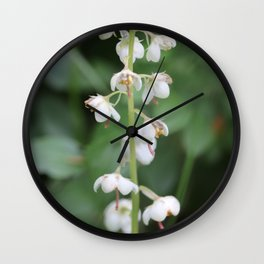 White flower Pyrola rotundifolia Wall Clock