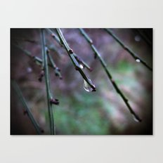 Say hello to your mother for me Canvas Print