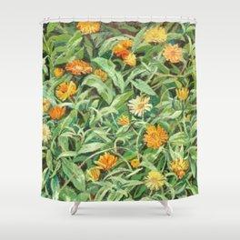 Wild Orange Daisies by Herman Bieling Shower Curtain