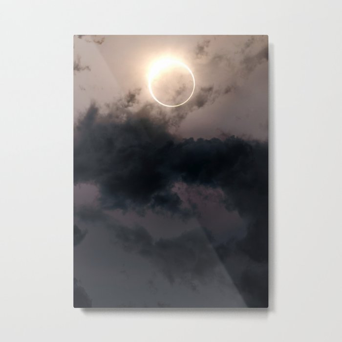 Fleeting Metal Print