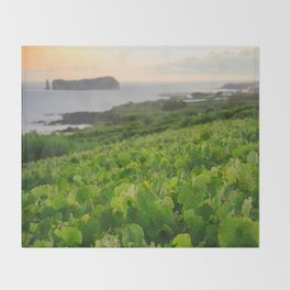 Grapevines and islet Throw Blanket